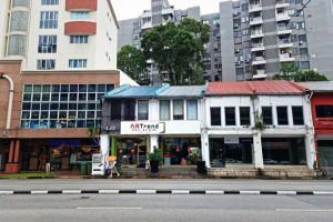 Read more about the article Shophouses on Amoy Street, Balestier Road for sale